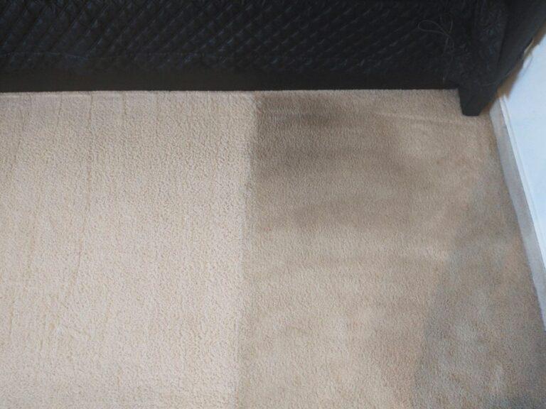 Widok na fragment wykładziny dywanowej częściowo wypranej